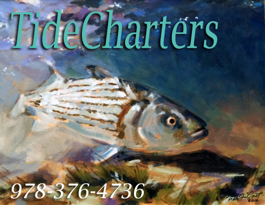Tide Charters Newburyport